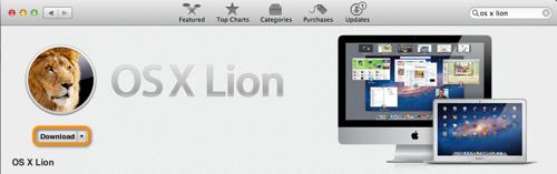 Lion dnld